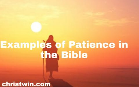 5 stories of patience in the bible