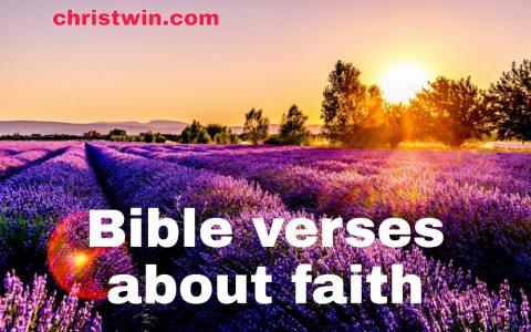 20 Bible verses about faith