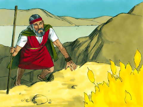 Examples of obedience in the bible
