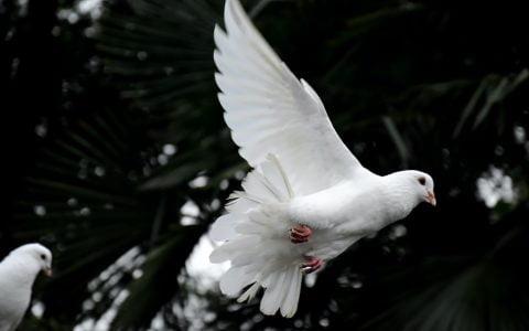 Powerful Ways to Awaken the Spirit